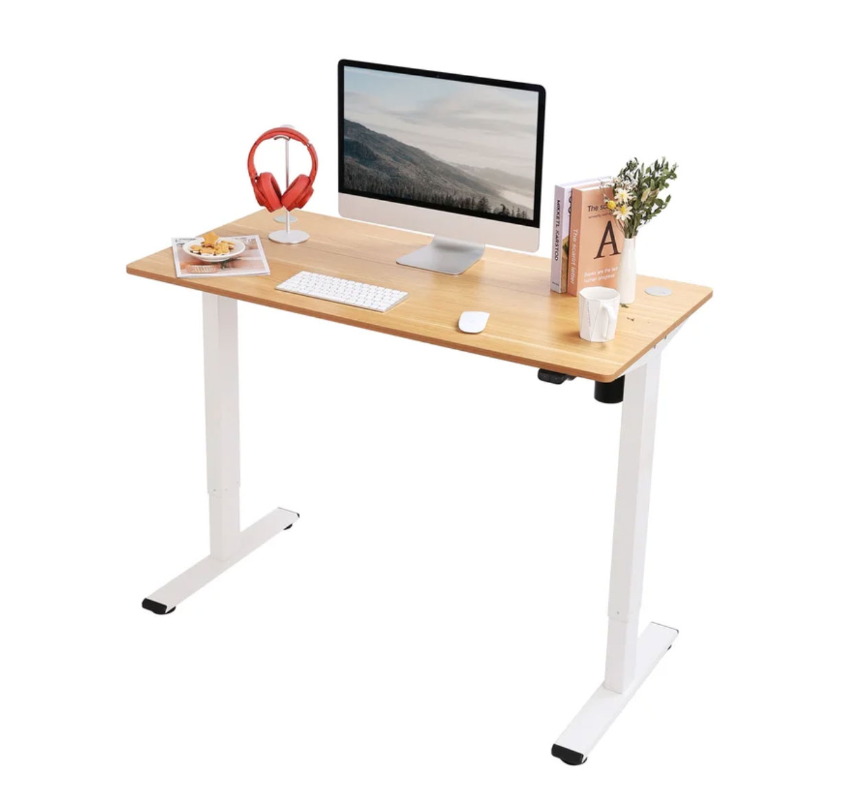 Flexispot Desk Review